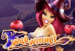 играть в игровой автомат Wild Witches